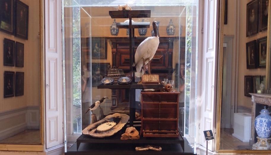 Cromhouthuis en Wunderkammer Het spanningsveld tussen storytelling in het museum en in de winkel.