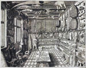 Wunderkammers: Van musea naar interieur.